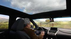 Lexus NX Hybrid: il suv ibrido alla prova del Vigneron - Immagine: 13