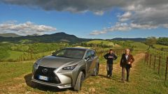 Lexus NX Hybrid: il suv ibrido alla prova del Vigneron - Immagine: 15