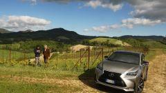 Lexus NX Hybrid: il suv ibrido alla prova del Vigneron - Immagine: 16