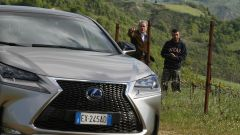 Lexus NX Hybrid: il suv ibrido alla prova del Vigneron - Immagine: 17
