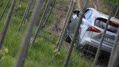 Lexus NX Hybrid: il suv ibrido alla prova del Vigneron - Immagine: 23