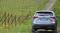 Lexus NX Hybrid: il suv ibrido alla prova del Vigneron - Immagine: 24