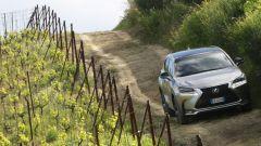 Lexus NX Hybrid: il suv ibrido alla prova del Vigneron