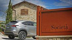 Lexus NX Hybrid: il suv ibrido alla prova del Vigneron - Immagine: 45