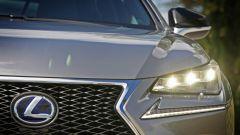Lexus NX Hybrid: il suv ibrido alla prova del Vigneron - Immagine: 63