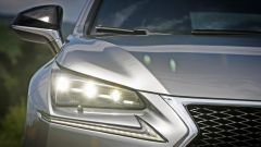 Lexus NX Hybrid: il suv ibrido alla prova del Vigneron - Immagine: 64