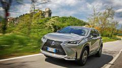 Lexus NX Hybrid: il suv ibrido alla prova del Vigneron - Immagine: 87