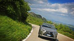 Lexus NX Hybrid: il suv ibrido alla prova del Vigneron - Immagine: 89