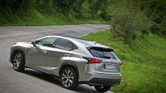 Lexus NX Hybrid: il suv ibrido alla prova del Vigneron - Immagine: 91
