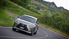 Lexus NX Hybrid: il suv ibrido alla prova del Vigneron - Immagine: 101