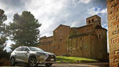 Lexus NX Hybrid: il suv ibrido alla prova del Vigneron - Immagine: 108