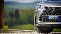 Lexus NX Hybrid: il suv ibrido alla prova del Vigneron - Immagine: 110