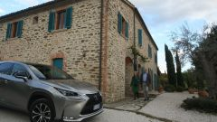 Lexus NX Hybrid: il suv ibrido alla prova del Vigneron - Immagine: 114