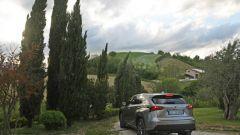 Lexus NX Hybrid: il suv ibrido alla prova del Vigneron - Immagine: 116