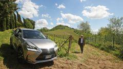 Lexus NX Hybrid: il suv ibrido alla prova del Vigneron - Immagine: 118