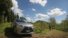Lexus NX Hybrid: il suv ibrido alla prova del Vigneron - Immagine: 119