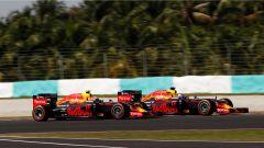 Malaysian GP - Verstappen e Ricciardo