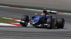 Marciello alla guida della Sauber nel venerdì del GP Malesia 2015