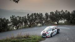 Marco Pollara e Giuseppe Princiotto - Peugeot 208 T16 R5