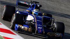 Marcus Ericsson - Sauber C36 (2017)