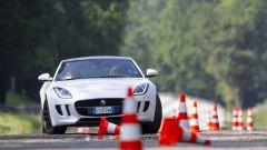 Quando Nadia Toffa girò a Monza su una Jaguar F-Type AWD - Immagine: 26