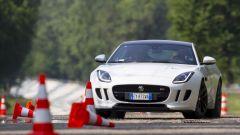 Quando Nadia Toffa girò a Monza su una Jaguar F-Type AWD - Immagine: 32
