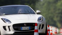 Quando Nadia Toffa girò a Monza su una Jaguar F-Type AWD - Immagine: 29