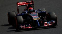 Max Verstappen - Scuderia Toro Rosso STR9 (2014)