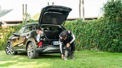 MegaBox di Ford Puma è ideale per riporre gli stivali infangati