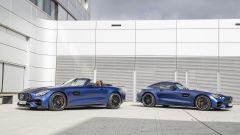 MERCEDES AMG-GT e GT-PRO MY2019: PERFORMANCE ALLO STATO PURO  - Immagine: 8