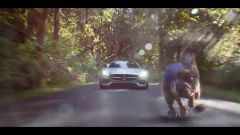 Mercedes AMG GT: The Big Race  - Immagine: 8