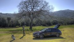 Mercedes CLA Shooting Brake - Immagine: 22