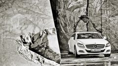 Mercedes CLS Shooting Brake, ora anche in video - Immagine: 26