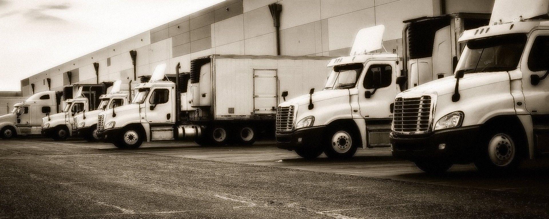 Mezzi da trasporto pesante