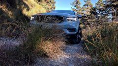 Michelin CrossClimate SUV: un momento della prova