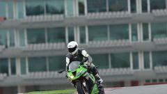 Michelin: la gamma stradale 2013 - Immagine: 7