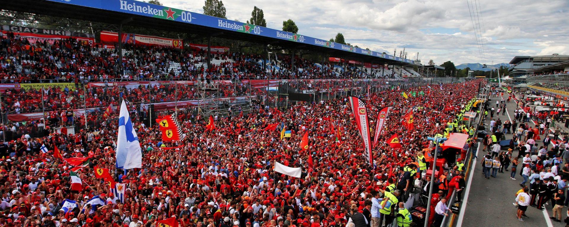 Monza, GP d'Italia 2019, la folla festeggia la vittoria di Charles Leclerc (Ferrari)