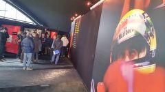 Ayrton Senna. L'ultima notte  - Immagine: 2