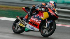 MOTO 3 SEPANG 2016: Brad Binder in pole