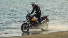 Moto Guzzi V85 TT: una Travel Enduro per Eicma 2018 [VIDEO] - Immagine: 4