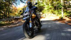 Moto Guzzi V85 TT: una Travel Enduro per Eicma 2018 [VIDEO] - Immagine: 5