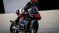 Moto3, Andrea Migno