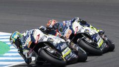 MotoGP 2019, Reale Avintia Racing
