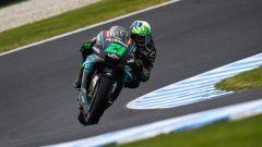 MotoGP Australia 2019, Phillip Island: Franco Morbidelli (Yamaha)