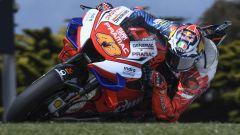 MotoGP Australia 2019, Phillip Island: Jack Miller (Ducati)