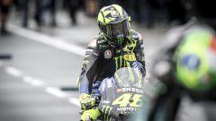 MotoGP Australia 2019, Phillip Island: Valentino Rossi (Yamaha)