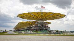 MotoGP Sepang Malesia: Prove libere, qualifiche, risultati gara - Immagine: 1