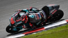 MotoGP Malesia 2019, Sepang: Fabio Quartararo (Yamaha)