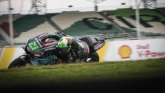 MotoGP Malesia 2019, Sepang: Franco Morbidelli (Yamaha)