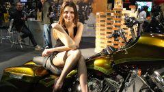 Motor Bike Expo 2015, cartoline dalla fiera - Immagine: 1
